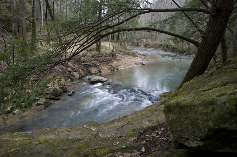 The Sipsey Fork flowing through the Sipsey Wilderness is Alabama's only federally designated Wild and Scenic River. | Photo by Nelson Brooke