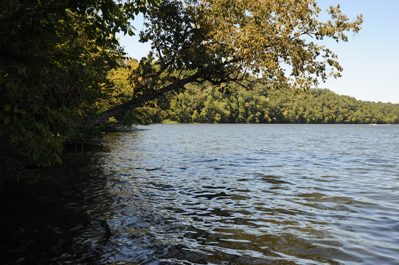 The upper Black Warrior River is regularly used for swimming, boating and recreation, and is home to the 33,280 acre Mulberry Fork Tract, part of Alabama's public lands program called Forever Wild. |  Photo by Nelson Brooke