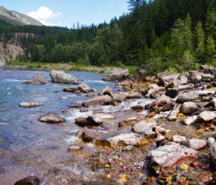Flathead River through Great Bear Wilderness.   Photo: Troy Smith (flickr)