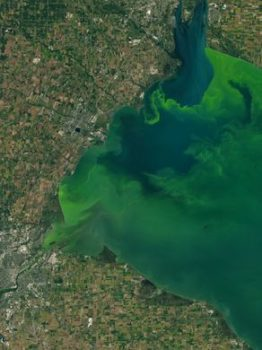 Satellite imagery of Lake Erie. | Photo: NASA