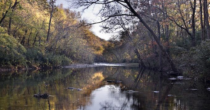 Arkansas' Buffalo River   Angela Peace