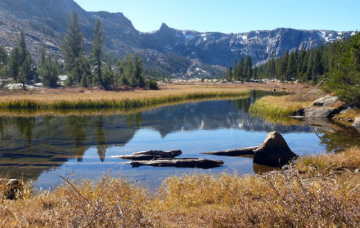 Long Meadow, Kings Canyon National Park