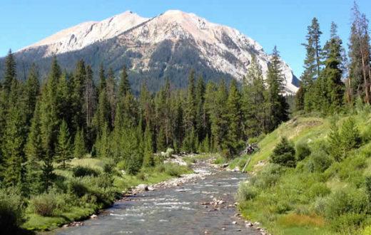 Taylor Fork River | Mike Fiebig
