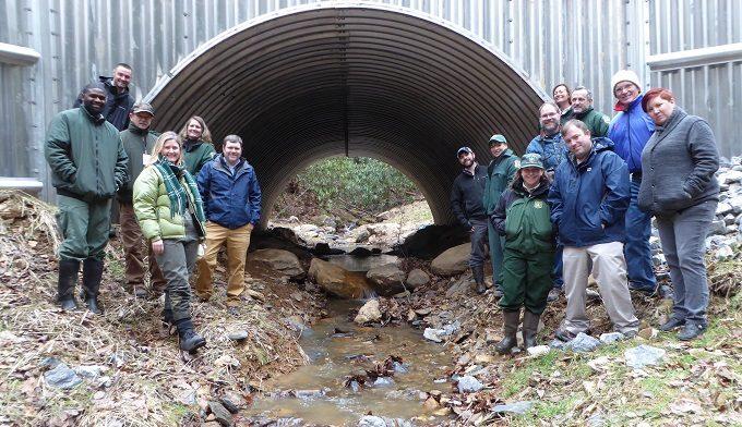 Briar Creek restoration, TN. | Credit: The Nature Conservancy