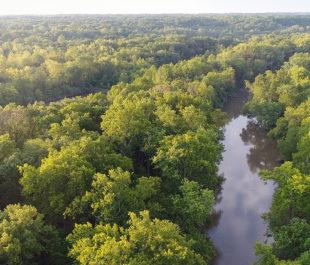 Middle Fork Vermilion River | Photo: Prairie Rivers Network