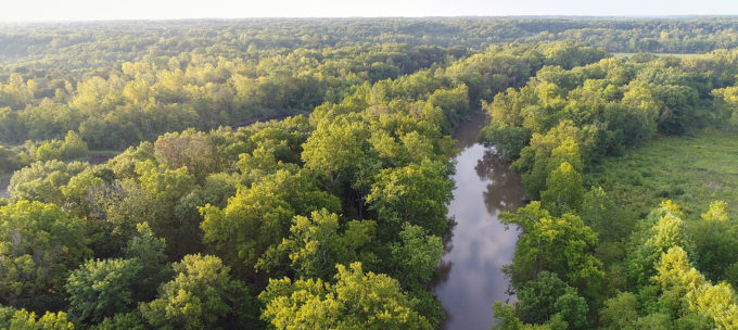 Middle Fork Vermilion River   Photo: Prairie Rivers Network