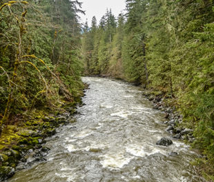 Nooksack River | Tipton Power