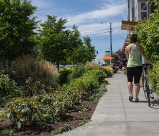 Rain gardens run along the sidewalk. | Marcela Gara, Resource Media