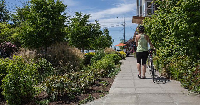 Rain gardens run along the sidewalk. | Marcela Gara, Resource Media