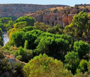 Gila River | Dennis O'Keefe