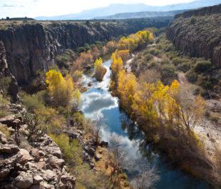 Verde River BLue Trail, AZ.   Jamie Mierau