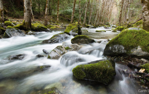 Whiskey Creek. Rogue River, Oregon   Photo by Garth Lenz/iLCP