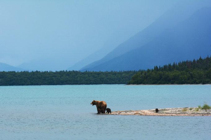 Naknek Lake | Photo by Paxson Woelber
