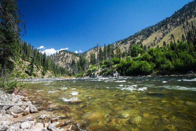 South Fork Salmon River | Photo by Daniel Patrinellis