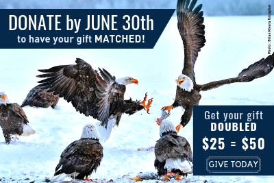 Give today all gifts matched!