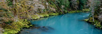 Elwha River, Lance McCoy
