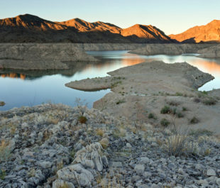 Lake Mead   Photo by Colleen Miniuk-Sperry