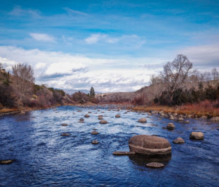 Animas River, CO   Photo by Sinjin Eberle