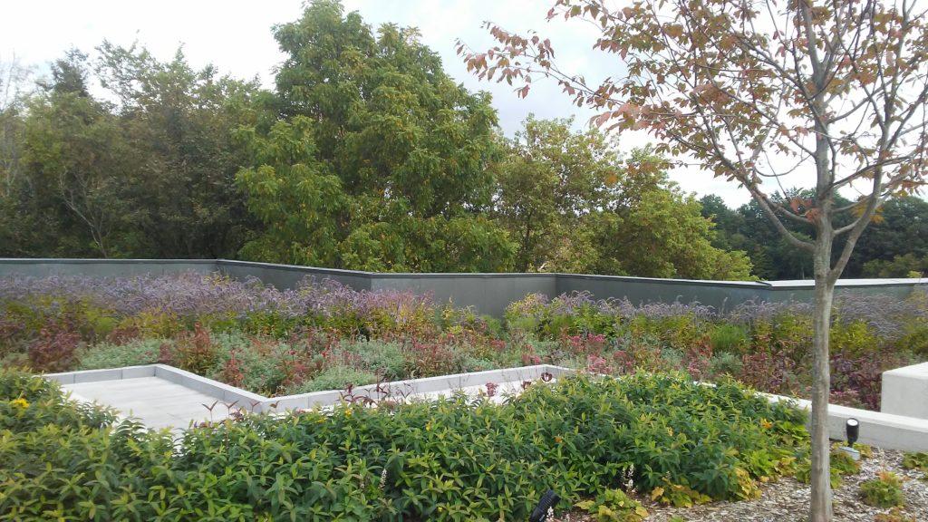 Fredrik Meijer Garden Green Roof | Photo by Shanyn Viars