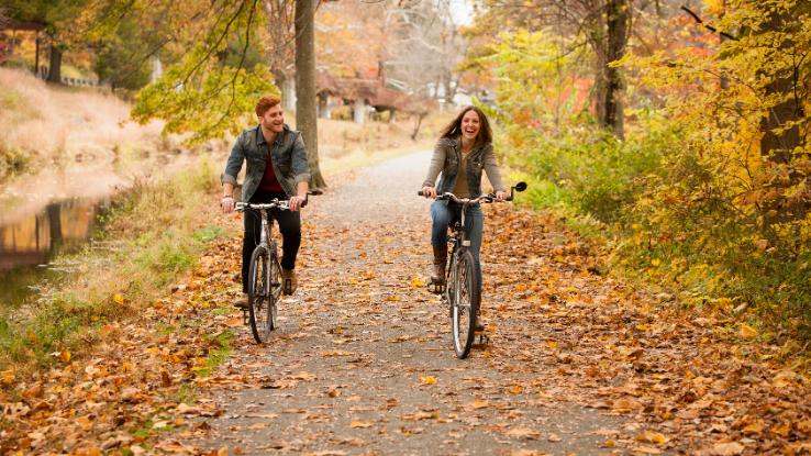 Road Bikes Fall