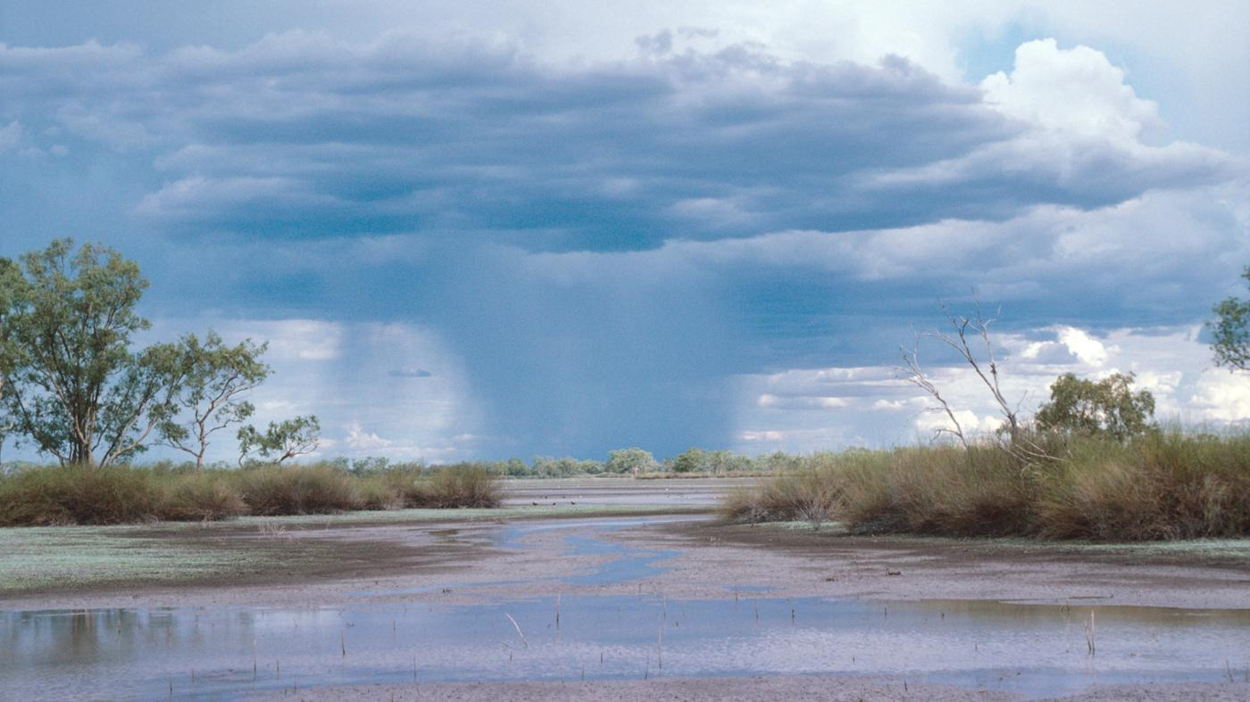average-amount-rainfall-wetlands