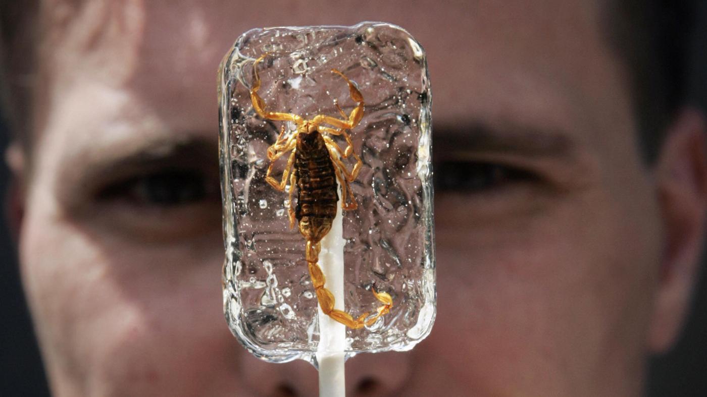 can-eat-scorpion-lollipop