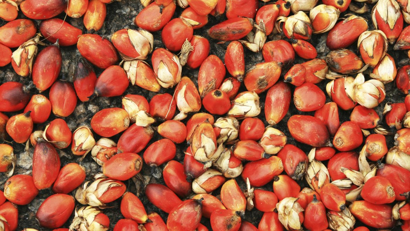 benefits-red-palm-oil