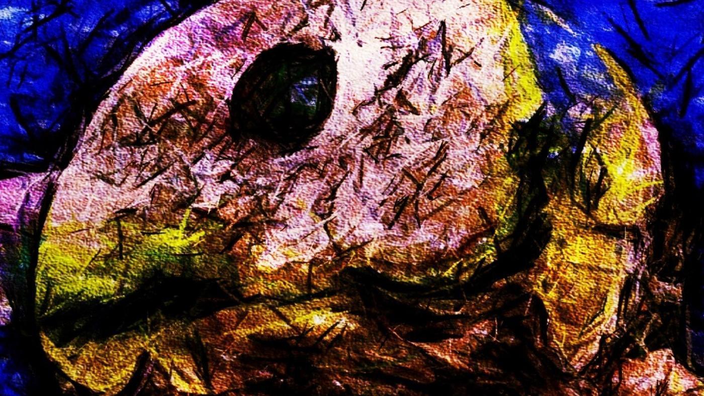 blobfish-eat