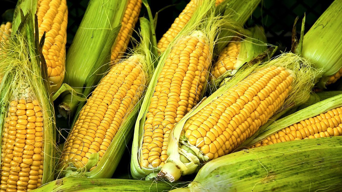 corn-starch-vegetable