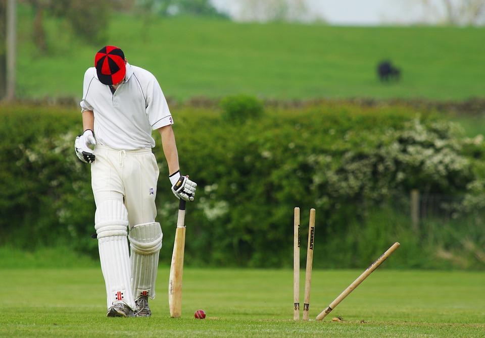 Cricket 724616 960 720