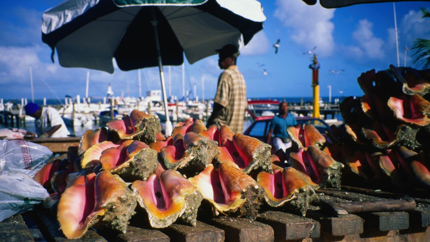 currency-used-nassau-bahamas