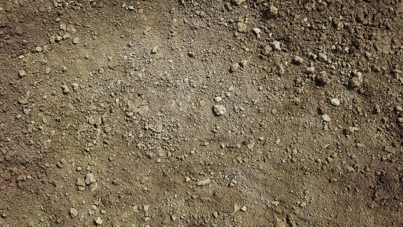 definition-sandy-soil