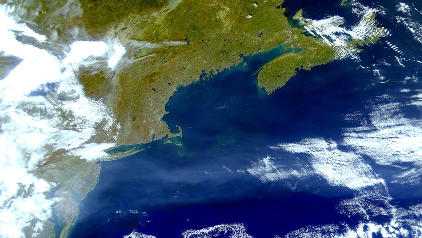 gulf-stream-located