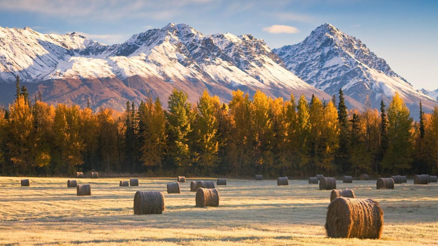 homestead-alaska