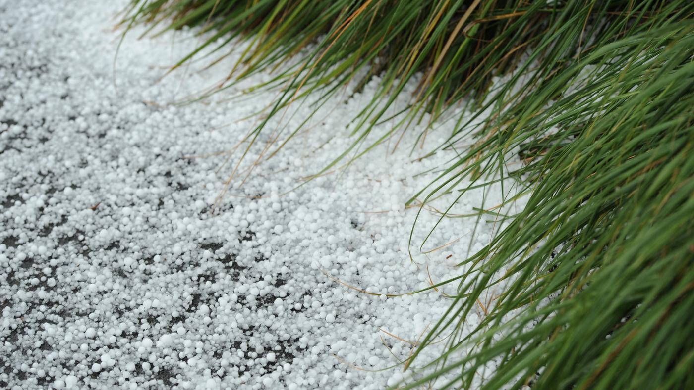 hail-form