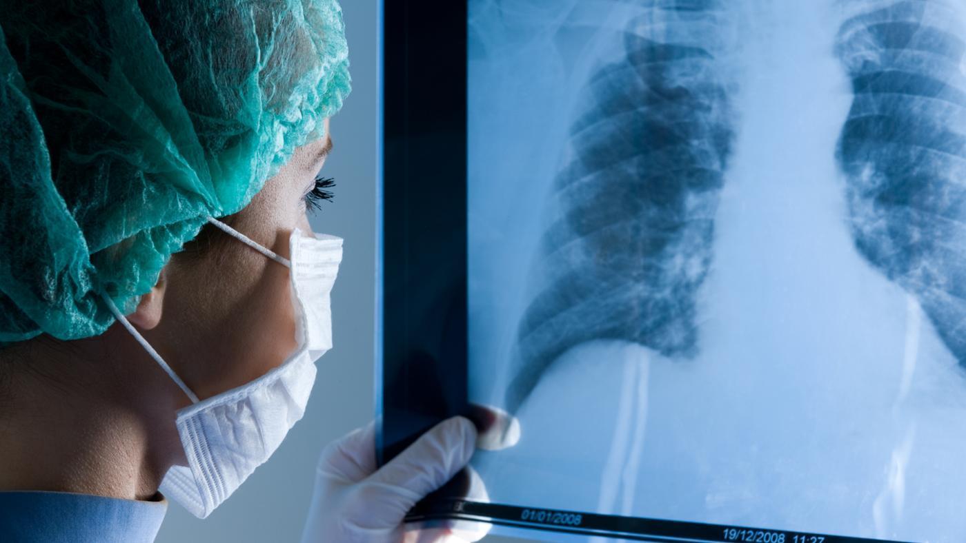 major-organs-respiratory-system