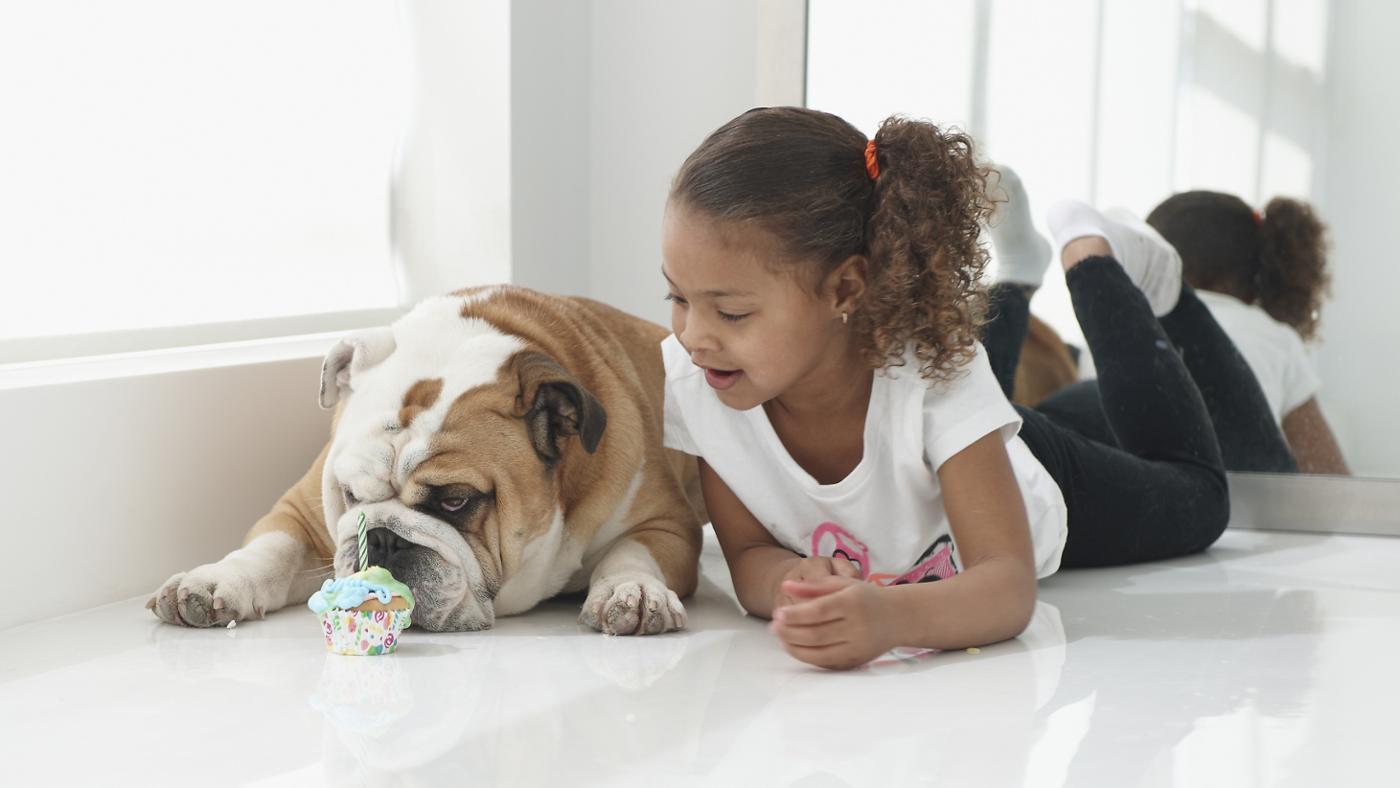 many-dog-years-one-human-year