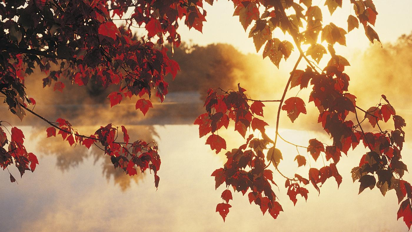 months-north-america-considered-fall