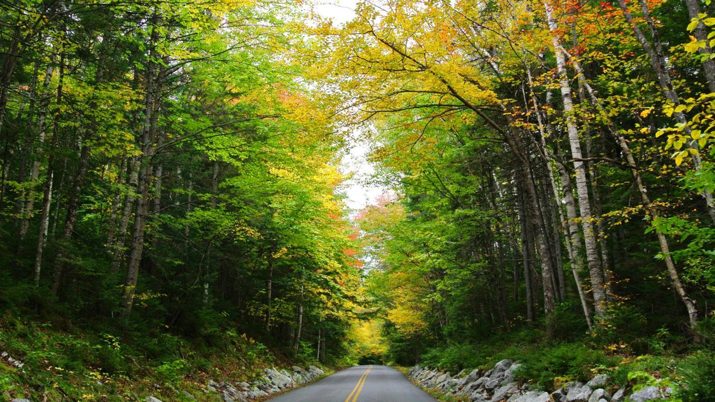 new-hampshire-s-natural-resources