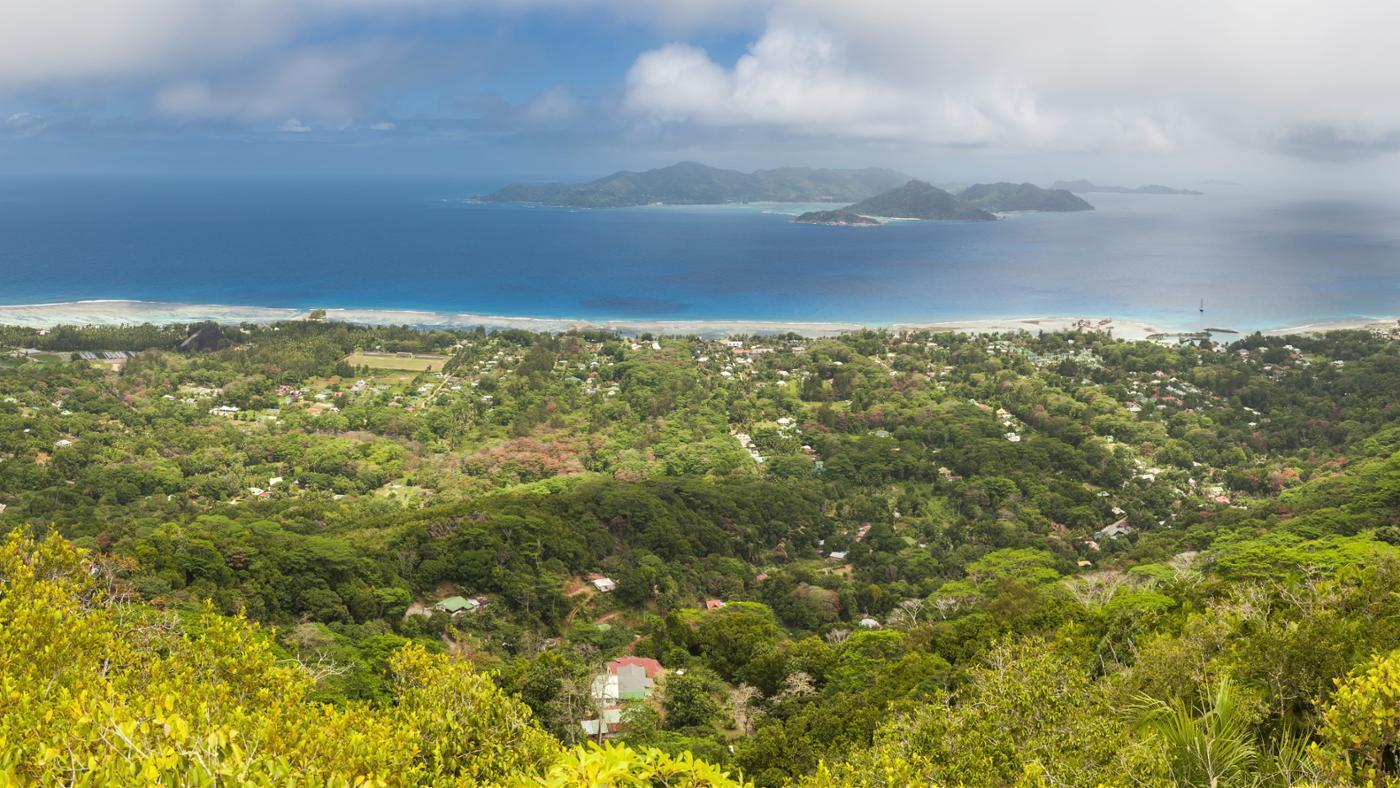 rainforests-found-near-equator