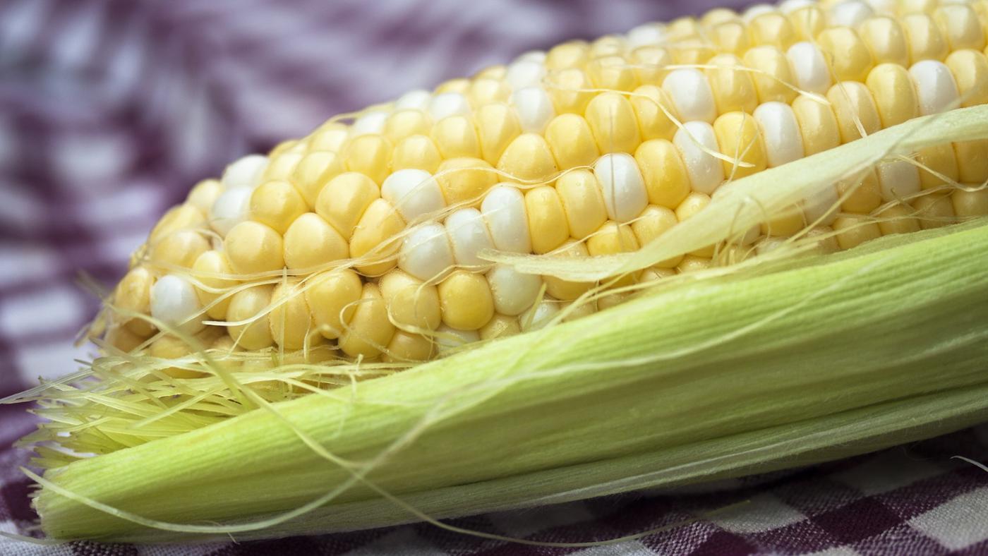 reheat-corn-cob