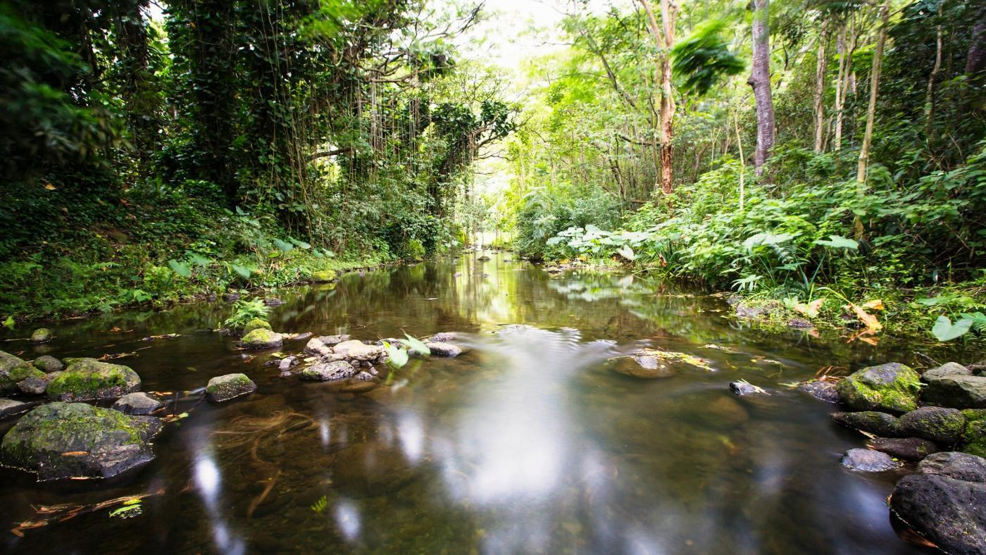 small-river-flows-larger-river-called