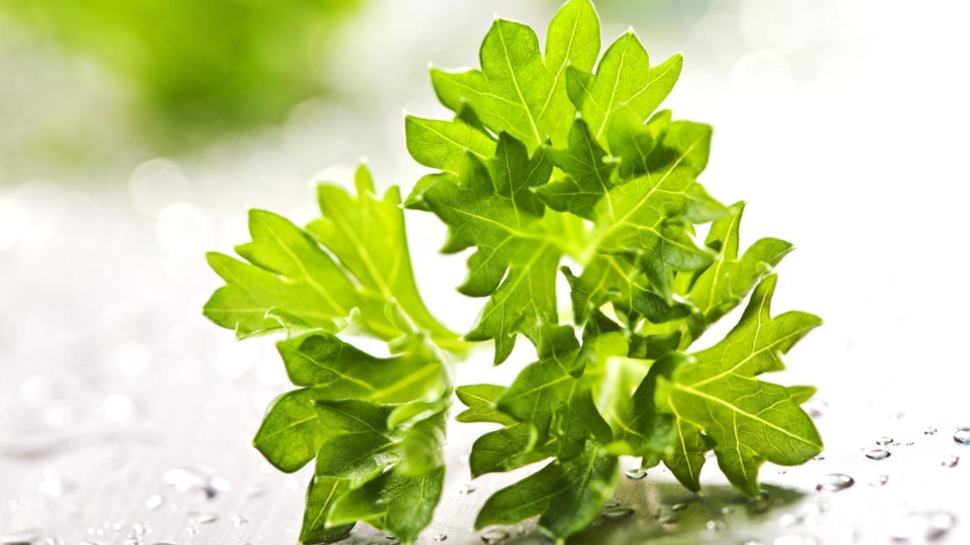 sprig-parsley