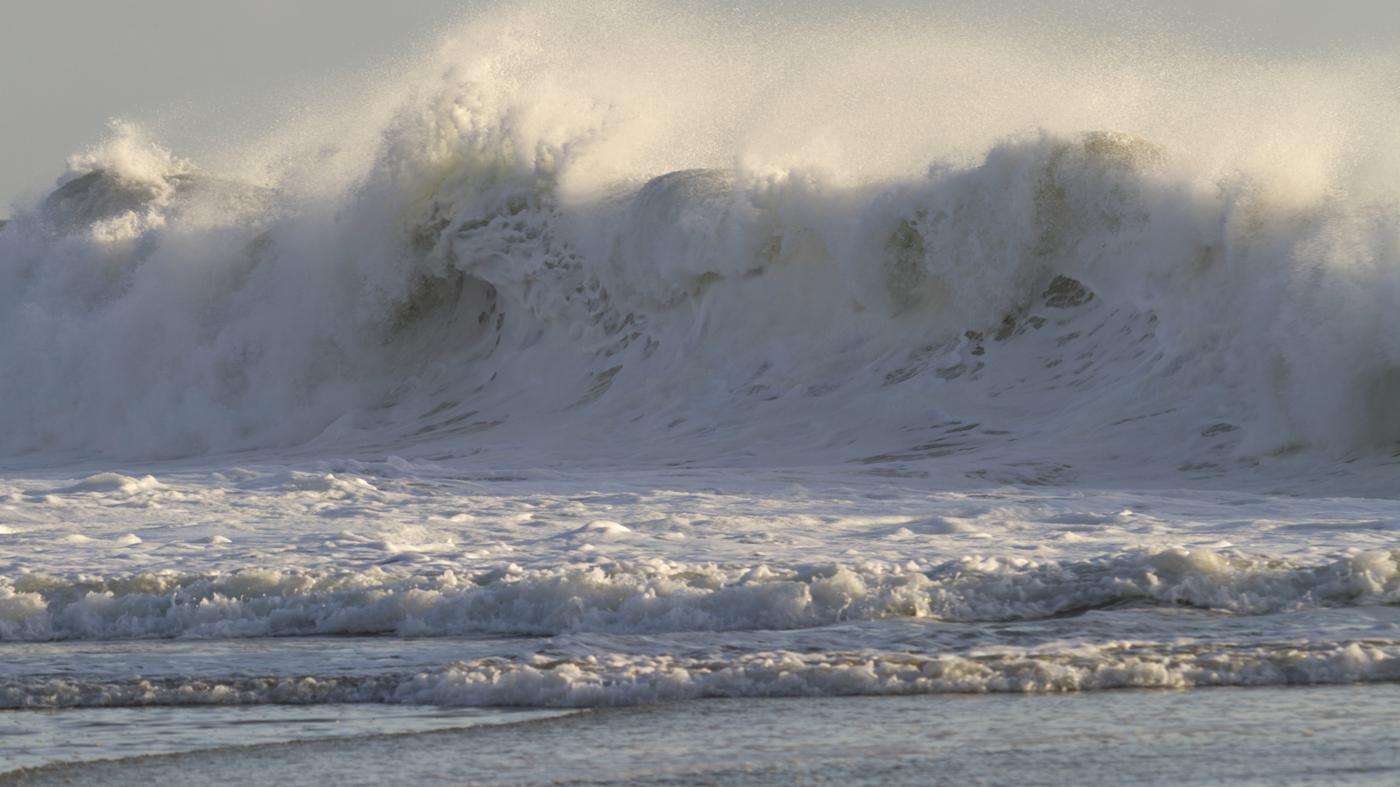 tsunamis-form
