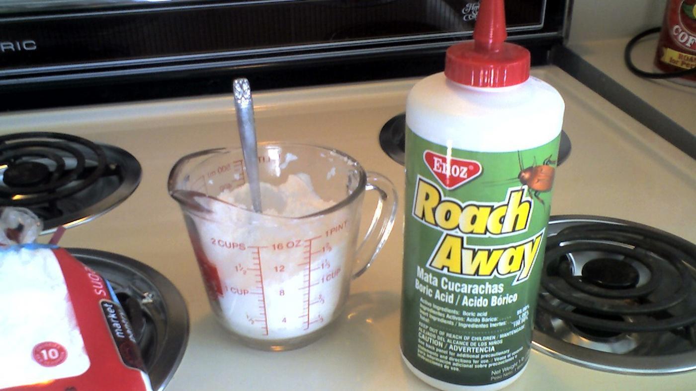 using-boric-acid-safe