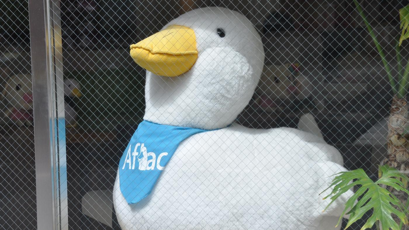 What Does Aflac Cover?