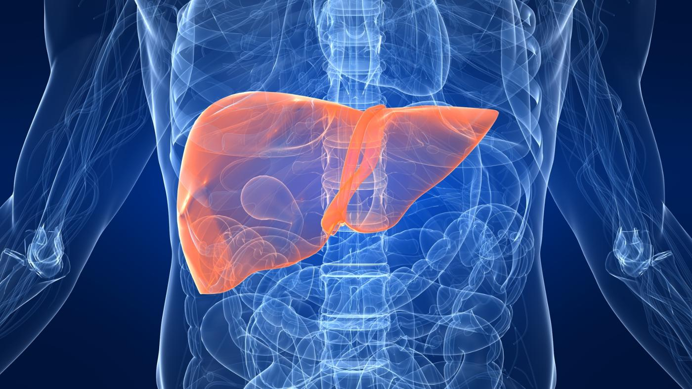 What Is the Average Life Span Following a Liver Transplant Operation?