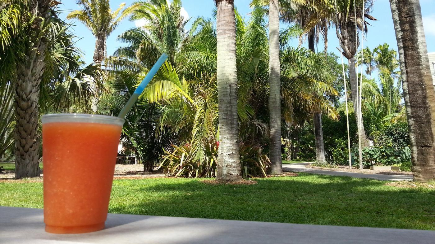 What Are the Benefits of Drinking Papaya Juice?