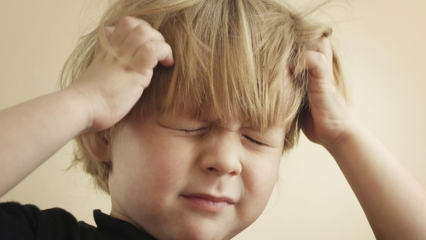 Are There Bugs Other Than Lice That Can Infest Human Hair?
