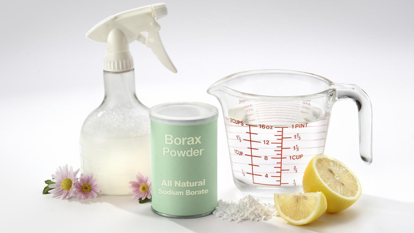 Where Can You Buy Borax Powder?